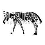 Samolepky na stenu zebra