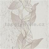 Vliesové tapety na stenu Natalia popínavé listy hnedé