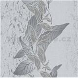 Vliesové tapety na stenu Natalia popínavé listy sivé