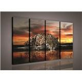 Obraz na plátne Jaguár farebný 120 x 80 cm