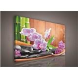 Obraz na stenu orchidea s kameňami 75 x 100 cm