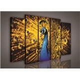Obraz na plátne páv so žltým perím 150 x 100 cm