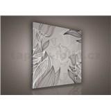 Obraz na stenu listy s tulipánmi 80 x 80 cm