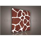 Obraz na stenu žirafia koža 80 x 80cm
