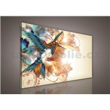 Obraz na stenu kolibrík 100 x 75 cm