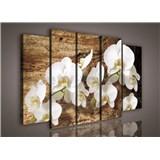Obraz na plátne orchidea na dreve 150 x 100 cm