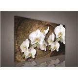 Obraz na stenu biela orchidea na drevenom srdci 75 x 100 cm