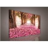 Obraz na stenu alej stromov 75 x 100 cm