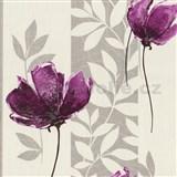 Vliesové tapety - vlčí mak fialový so striebornými listami na krémovom podklade
