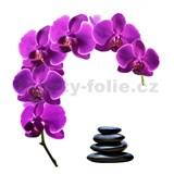 Samolepky na stenu orchidea s kameňmi 85 cm x 88 cm