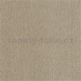 Vliesové tapety na stenu Studio Line - Ligneous štruktúrovaná hneda