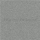 Vliesové tapety na stenu Times štrukturovaná hladká svetle sivo-strieborná