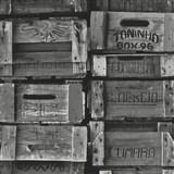 Vliesové tapety na stenu Times debny sivé