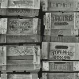 Vliesové tapety na stenu Times debny svetlo sivé
