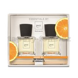 Bytová vôňa IPURO Essentials orange sky set 2x50ml