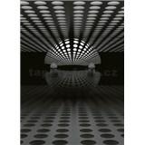 Vliesové fototapety 3D guľa strieborná rozmer 184 x 254 cm