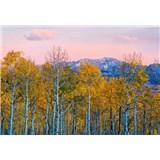 Vliesové fototapety brezy a hory rozmer 368 cm x 254 cm