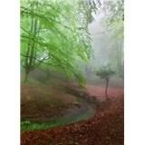 Vliesové fototapety les v mhle rozmer 184 x 254 cm