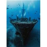 Fototapety vrak lodi rozmer 184 x 254 cm