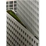 Vliesové fototapety architektúra biele výškové budovy rozmer 184 x 254 cm