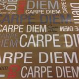 Samolepiace tapety Carpe Diem 45 cm x 15 m