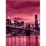 Vliesové fototapety Brooklyn Bridge rozmer 208 cm x 146 cm