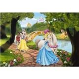 Fototapety Disney princezné na slávnosti