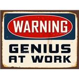 Retro tabule Warning Genius at Work 40 x 30 cm