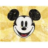 Retro tabule Mickey Mouse 40 x 30 cm